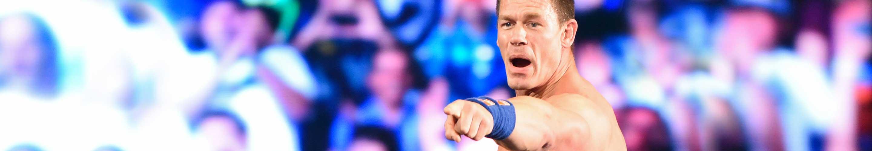 WWE Wrestling